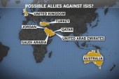 Syria strikes: 'quick shock and awe'?