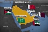 Our allies in the fight against ISIS