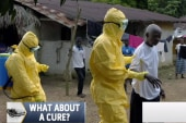 Why is there still no Ebola cure?