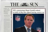 Goodell to testify at Ray Rice appeal hearing