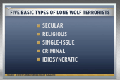 'Lone wolf' attacks have US on high alert