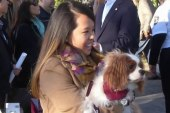 Ebola-free nurse reunited with dog Bentley