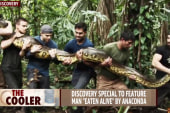 """Man to be """"eaten alive' by an anaconda"""