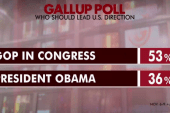 Over half of US want more GOP influence: poll