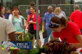 New program reduces food insecurity
