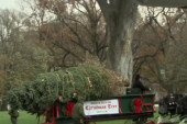 Christmas tree arrives at the White House