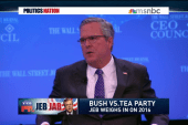 Another Bush in office in 2016?