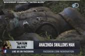 Man describes being eaten by anaconda