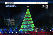 National Christmas Tree shines bright