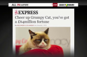 About that 'Grumpy Cat' backlash...