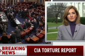 WH calls torture report details 'troubling'