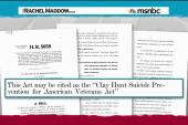 Veteran suicide prevention bill passes House