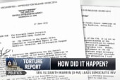 Countries react to CIA torture report