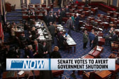 Senate votes to avert government shutdown