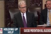 Senate fails to pass suicide prevention aid