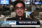Who are the Pakistani Taliban?