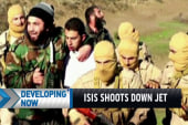 ISIS shoots down jet