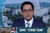 Dems assemble 'immigration strike team'