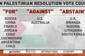 Palestine statehood bid fails at UN