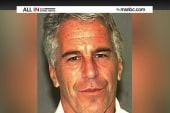 The bizarre case of Jeffrey Epstein