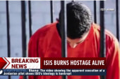 The impact  of the new ISIS execution video