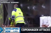 Jewish-European community attacked again