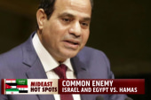 Israel, Egypt unite against common enemy