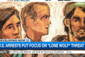 US arrests put focus on 'lone wolf' threat