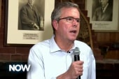 Jeb Bush plays down policy differences...