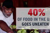 Over 40% of US food goes to waste