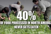 40% of food produced in US is wasted