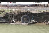 Guy swims the Gowanus, lives to tell the tale