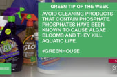Green Tip: avoid cleaners with phosphates