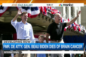 Delaware flags at half-staff for Beau Biden