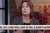 Fmr. FDIC chair: Warren has real courage