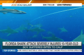 10-year-old injured severely injured by shark