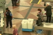 Report scrutinizes TSA vetting process