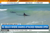 NC beach remains open despite shark attacks