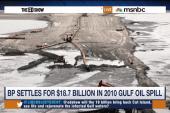 Massive settlement reached in BP spill