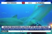 Why has NC seen so many shark attacks?