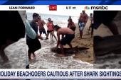 Shark attacks keep beachgoers ashore