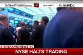 New York Stock Exchange halts trading