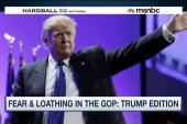 Donald Trump battles the Republican...