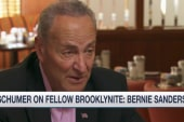 Schumer on fellow Brooklynite Bernie Sanders