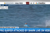 Shark attack caught live on video