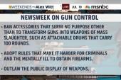 Calls for compromise in gun reform debate