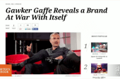 Did Gawker go too far? Not everyone agrees