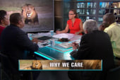 Why Cecil's death causes emotional reactions