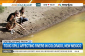 Thousands impacted by Animas River spill