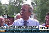 Trump, Bush defend term 'anchor babies'